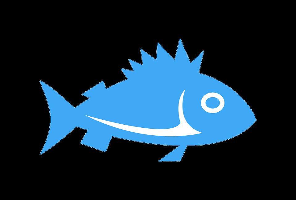 Fundo branco. Ícone de um peixe azul.