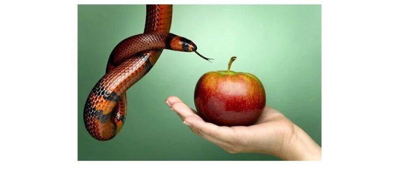 Fundo verde. Uma mão estendida com uma maçã. Uma cobra com a língua para fora em direção à maçã.