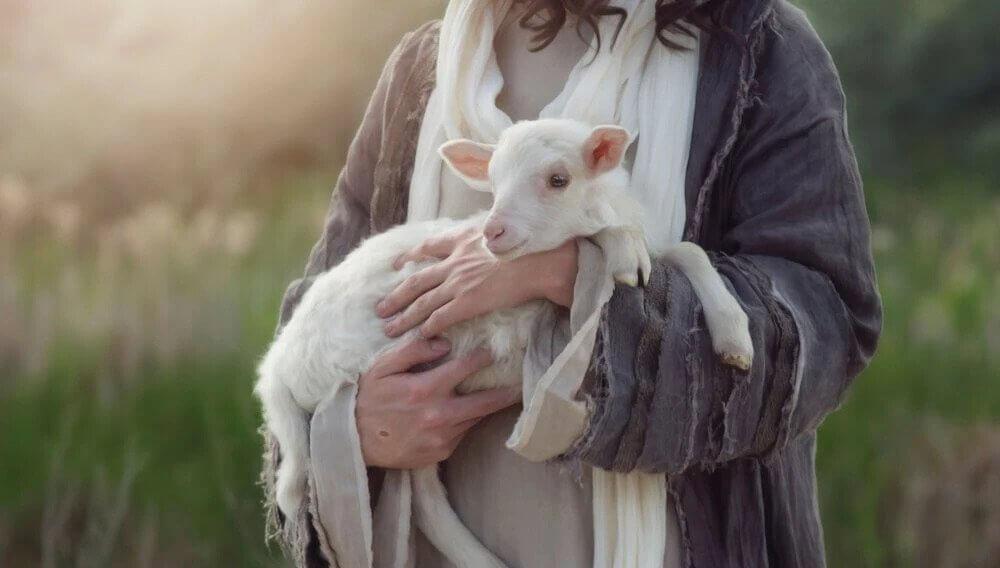 Imagem de uma pessoa segurando um cordeiro pequeno e branco.